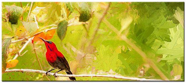 vogel modern groot schilderij